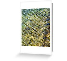 Transitory Moment Greeting Card