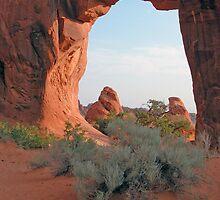 Arches National Park Utah by Luann wilslef
