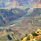 The Grand Canyon River View  by Judy Grant