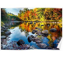 Autumn Colors Reflections  Poster