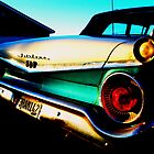 Fifties Ford Fairlane Fairly Parked on the Parkway by Hank Rodriguez