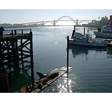 Bridge in Newport, Oregon Photographic Print