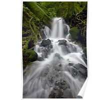 Lower Fairy Falls Poster