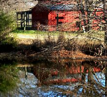 Country reflections by becky-lou