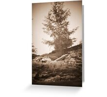 untitled~5 Greeting Card