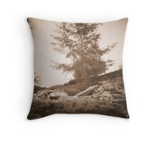 untitled~5 Throw Pillow