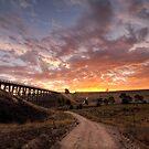 Nimmon's Bridge by bettyb