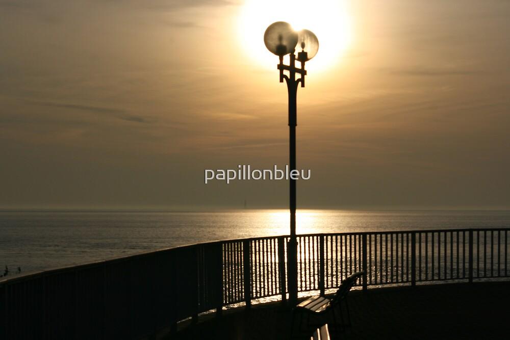 Sun-Light by Pamela Jayne Smith