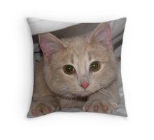 Peek-a-boo!  Throw Pillow
