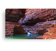 Kermits Pool Revisited Canvas Print