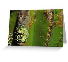 Prickly Pear with Lichen Greeting Card