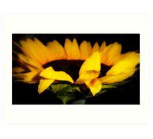 Art of the Sunflower Art Print