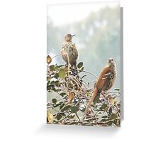 Two by Two Greeting Card