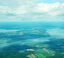 Aerial View by Debbie Stobbart