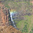 Waimea Canyon Falls by Robert Yone