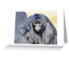 Young Adult - Spider Monkey Greeting Card