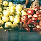 Green Market 2002 W. Cook by wendy cook