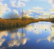 Cloudy day at the Wetland Centre. by Allan McKean