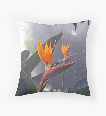 Bird of Paradise 1 Throw Pillow