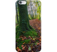Autumn Forest Walk iPhone Case/Skin