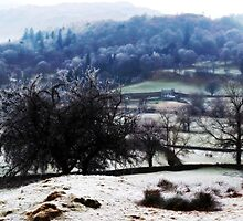 View from Spy Hill. by diamondlou