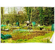 The Allotment Poster