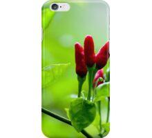 Bird's Eye Hot Chilli Love  iPhone Case/Skin