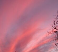 RIBBONS IN THE SKY by talindsey