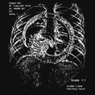 Alien chestburster (improved) by Mirth