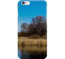 Divining beauty of spring iPhone Case/Skin