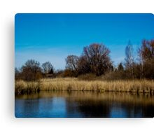 Divining beauty of spring Canvas Print
