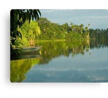 Sandoval lake, Madre de Dios, Peru Canvas Print