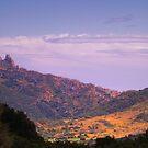 Chateau de Queribus by WatscapePhoto