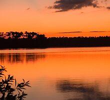 sunset on Lake Sandoval, Madre de Dios, Peru by juan jose Gabaldon