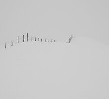 the white snow is not perfect V by andreasphoto