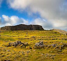 Dún Aonghasa - Aran Islands Panorama by Mark Tisdale