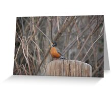 that's Mr. Robin to you Greeting Card
