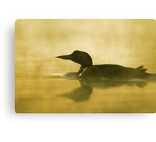 Into the fog - Common Loon Canvas Print