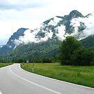 Quiet Valley Road by HelmD