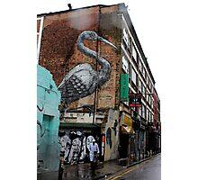Roa - Crane (Urban Wildlife) Photographic Print