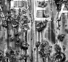 AREA by Paul Scrafton