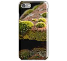 Mosses on the roof tiles iPhone Case/Skin