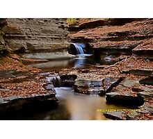 Autumn at the falls IV  Photographic Print