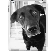 (Wo)man's best friend 1 iPad Case/Skin