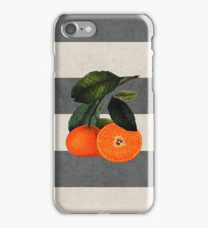botanical stripes 6 iPhone Case/Skin