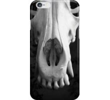 Coyote Ugly iPhone Case/Skin