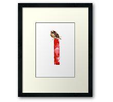 Watercolor alphabet I sparrow Framed Print