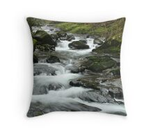 Sweet Creek 5 Throw Pillow