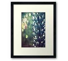 Dreams of Summer Framed Print