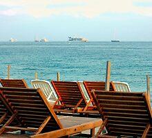 Riviera Chairs by Sheri Greenberg